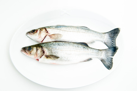seabass: Couple of fresh raw seabass fish on white plate and white background