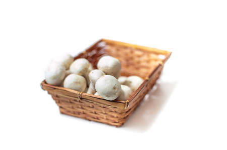 differential focus: Brown basket with bunch of white raw cultivated champignons on mushrooms white background, close up with differential focus