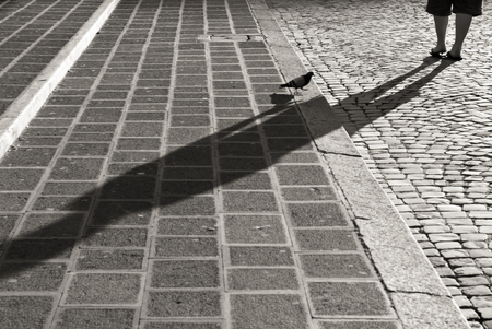 pidgeon: Pidgeon on cobblestone stairs in Rome while one person is walking in background, black and white life in Rome