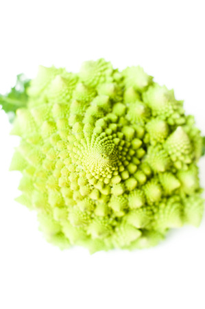 head of cauliflower: Roman broccoli cauliflower close up selective focus on head isolated on white background