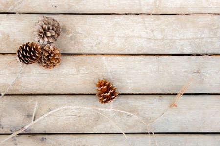 lineas horizontales: Conos del pino en tablero de madera con líneas horizontales