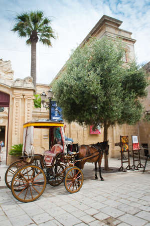 horse cart: Typical horse cart in medieval town of Mdina, Malta island