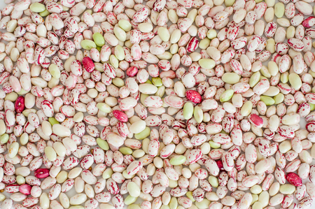 Texture of many cranberry beans background red and white, view from the top