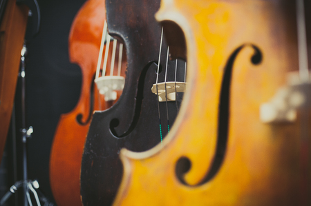 Black double bass bridge and string and out of focus different color instruments aligned Stock Photo
