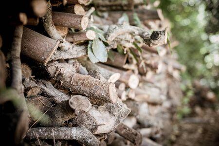 Closeup of big dry firewood log stack, natural combustible Stock Photo