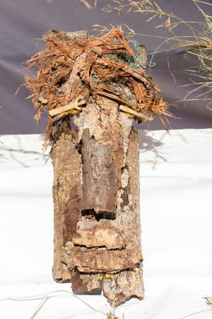 face in tree bark: homemade mask made with tree bark Stock Photo
