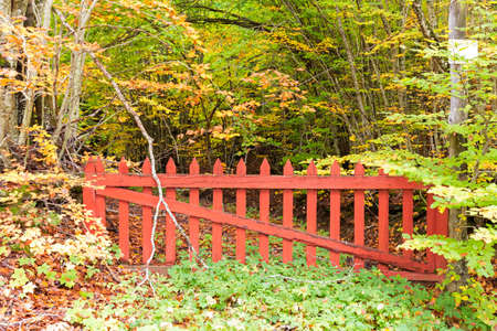 big old red gate blocking the road in the woods