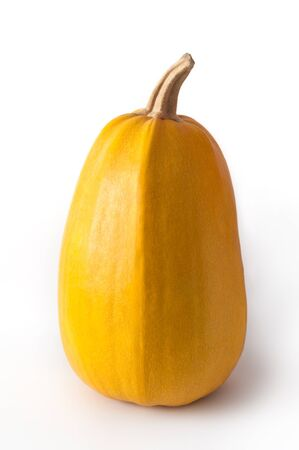 diffuse: Single yellow pumpkin isolated on white background with diffuse light coming from the left. Stock Photo