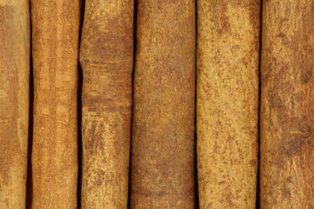 cinnamon bark: Sticks cinnamon bark abstract background Stock Photo