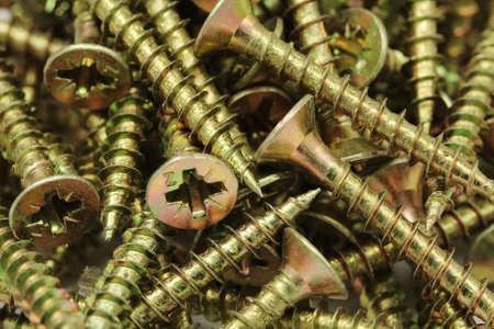 anodized: A long anodized screws closeup