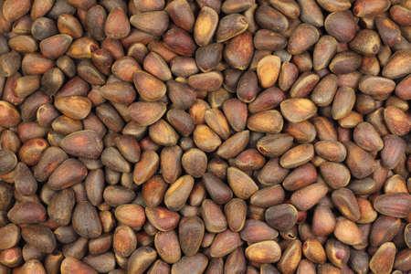 pignons de pin: noix de pin fond abstrait brun
