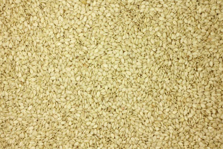 white sesame seeds: white sesame seeds abstract background