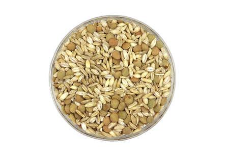 graan granen in een glazen container op een witte achtergrond