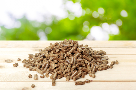 alternative energy sources: Wood pellets on a green background. Biofuels.