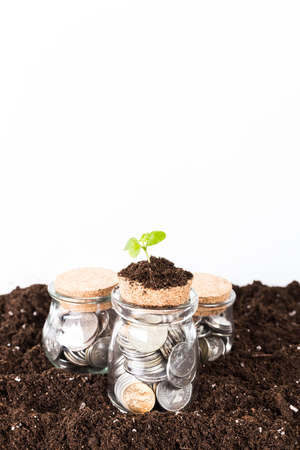 trees growing on coins jar Stock Photo