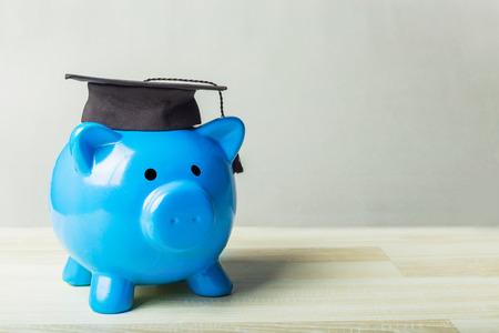 Het diplomaspaarvarken van het universiteits gediplomeerde studenten Stockfoto