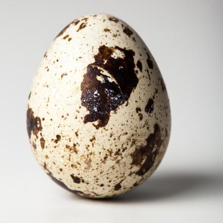 Quail egg on a white background