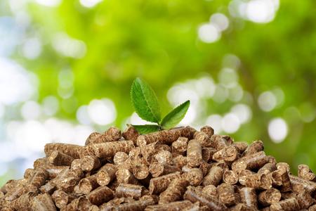 Pellets de madera sobre un fondo verde. Biocombustibles