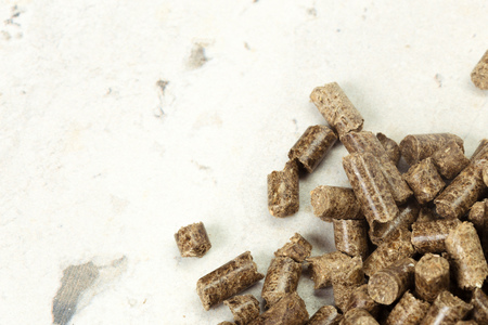 bioenergy: Energy. Pellets on the table Stock Photo