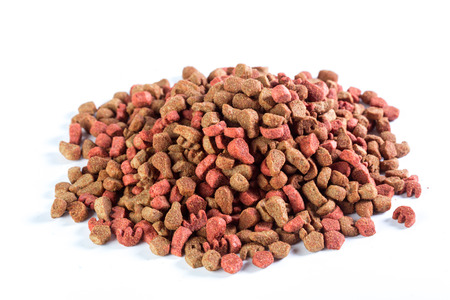 dry dog food isolated on white background