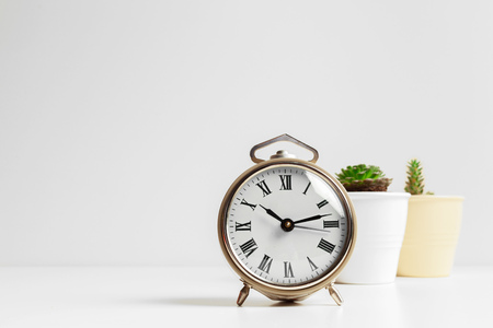 Cactus flowerpot and white alarm clock