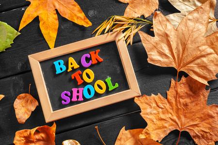 Back to school chalkboard Stock Photo
