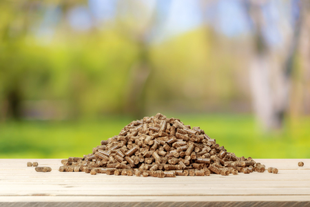 pellet on the table