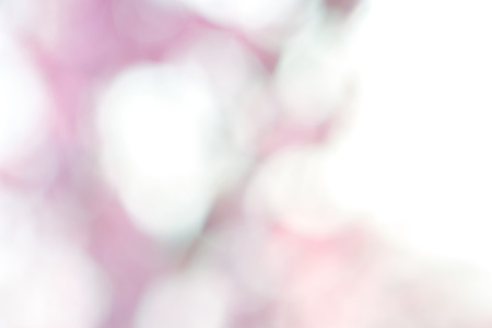 Pink spring background 版權商用圖片