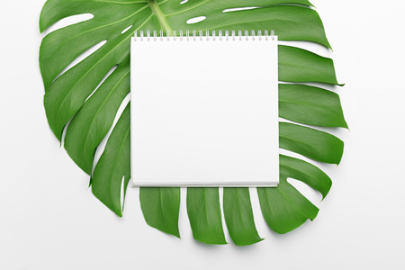 Palm leaves and a paper notebook with free space for text. 스톡 콘텐츠