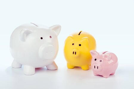 Group of colorful piggy banks. Creative photo.