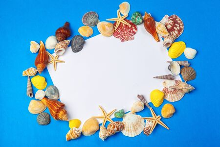 Flat lay. Top view. Frame of shells of various kinds on a blue background. Creative photo.