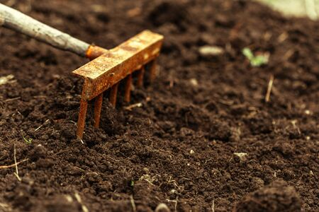 shot of digging at allotment. Close-up, Concept of gardening. creative photo.