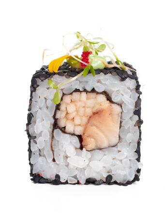 Sushi Roll isolated on a white background. creative photo.