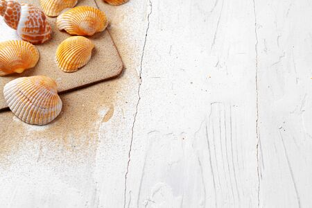 Clipboard with sea shells on wooden table close up, copy space