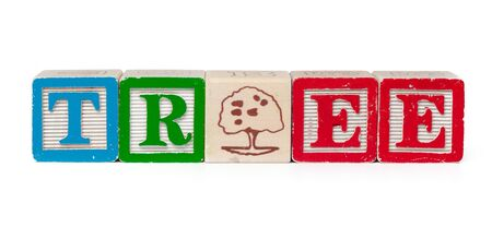 Colorful alphabet blocks. Word tree isolated on white background