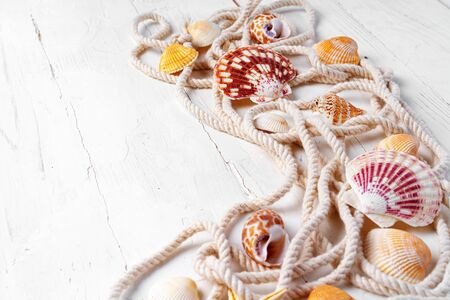 Sea shells with rope on white wooden background, copy space. Vacation concept Foto de archivo
