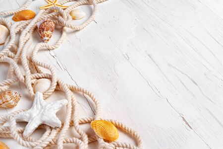 Sea shells with rope on white wooden Standard-Bild