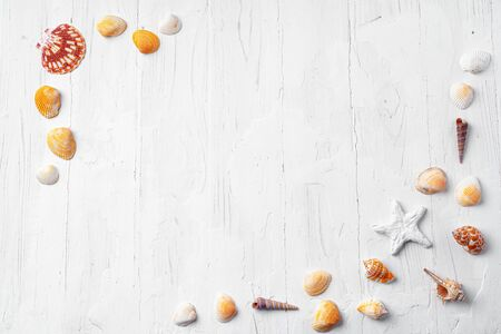 White wooden background with sea shells, copy space