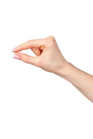 Female hand holding something isolated on white background, copy space