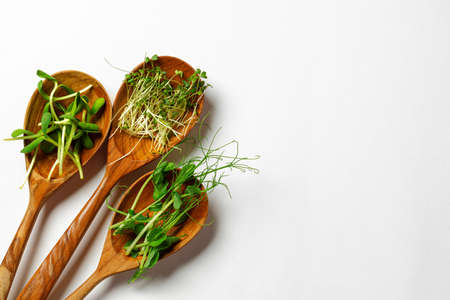 Micro greens in wooden spoon on white background, top view