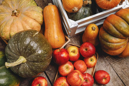 Pumpkins and red apples on wooden background Standard-Bild