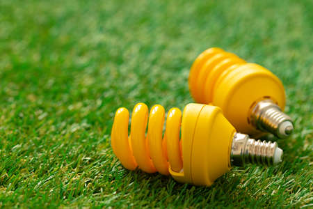 Energy efficient light bulb lying on grass Standard-Bild