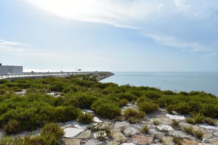 Manfredonia Sascape