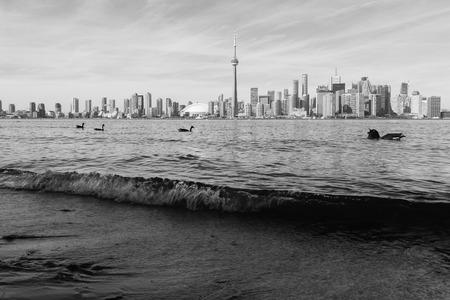 Toronto in black and white Stock Photo