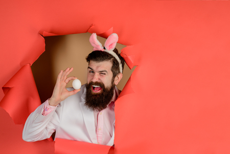 Happy Easter! Through paper. Easter. Bearded man with bunny ears. Happy man holds white egg. Egg hunt. Easter. Bunny ears. Breaking paper. Sale. Discount. Advertising. Bearded man through paper.