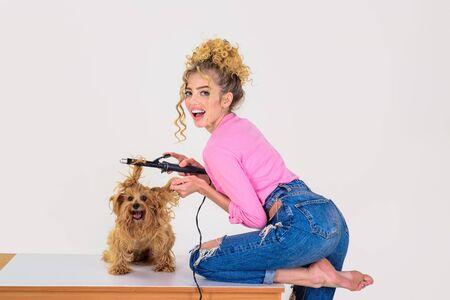 Dog grooming. Pet salon. Petshop. Dog salon. Beauty salon for animals. Grooming master making dog hairstyle. Pet grooming. Animal clinic. Vet.