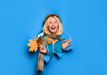Beauty and fashion. Smiling woman shows ok sign. Blonde girl in autumn time. Season autumn holidays. Autumn clothes collection. Smiling girl shows ok sign. Girl with leaves looking through paper hole 版權商用圖片
