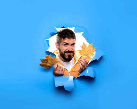 Cheerful man looking through torn paper with autumn leaves. Autumn clothes collection. Happy autumn. Autumn fashion for men. Bearded man with leaf. Sale. Discount. Man with golden leaves. Copy space