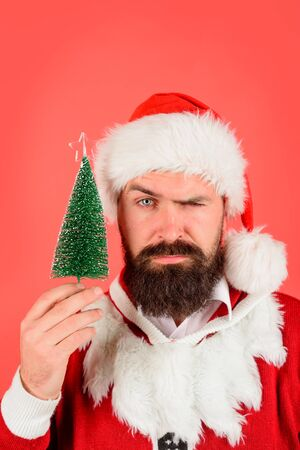 Christmas, Winter holiday, New Year concept. Santa man holds small Christmas tree. Bearded man ready for Christmas. Santa Claus with little fir-tree in hand. Serious Santa Claus hold small green tree