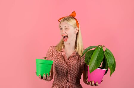 Houseplant. Winking woman holds flower in pot. Beautiful florist holds house plants. Happy woman hold potted plants. Woman gardener with potted plants. Charming cheerful pinup girl with flower in pot Archivio Fotografico - 134339823